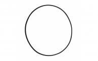 Уплотнительное кольцо 1720-0083